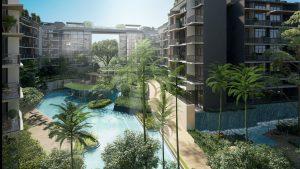 50 metre pool in Daintree residences