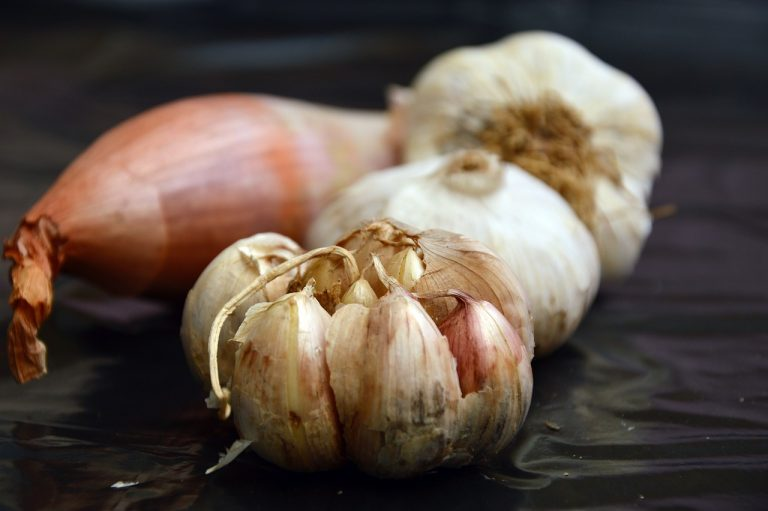 Garlic and onions are a natural repellent as it gives off a strong pungent smell. Besides repelling lizards, it also repels a wide range of other pests. Just place a few pieces in the corners of your home, and these pests will stay out of the area.