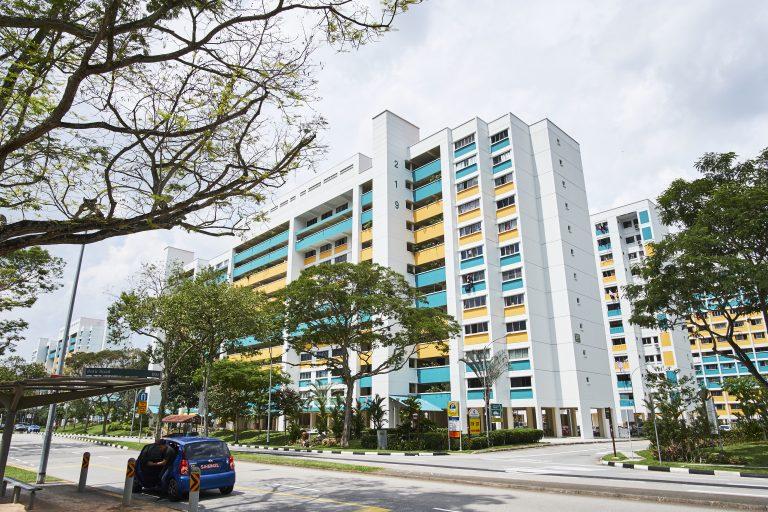 HDB in Block 219 Petir Road, Bukit Panjang.