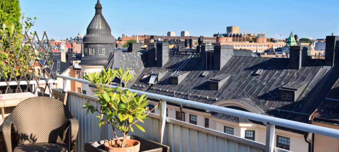How To: Build The Perfect Rooftop Garden