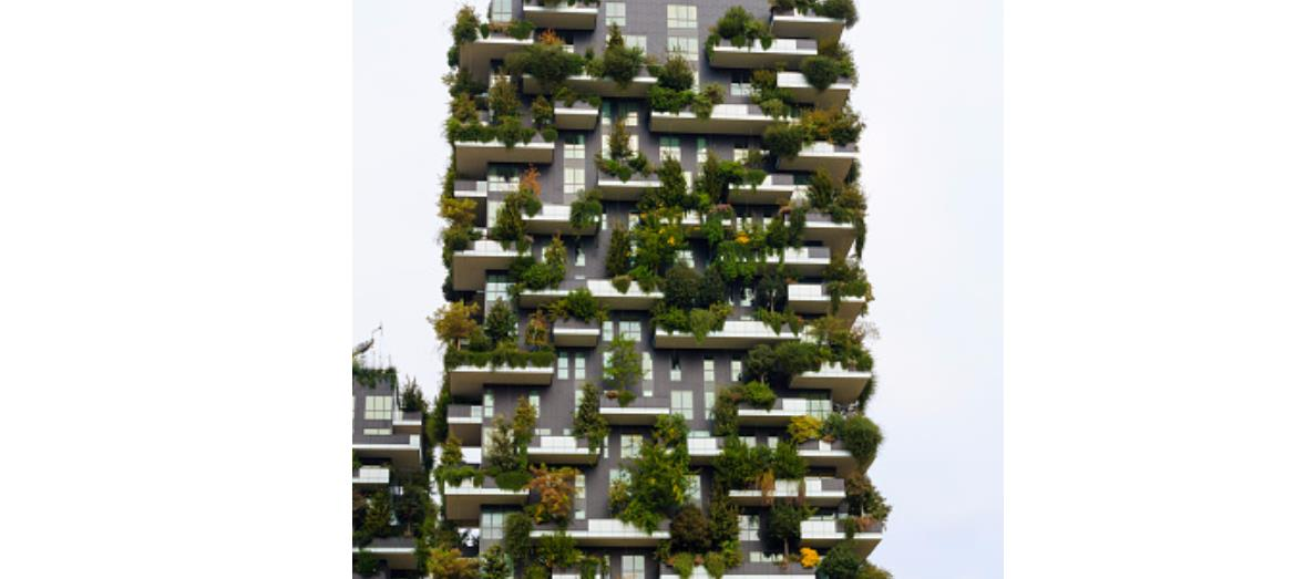Valuing green property - Would you buy one?