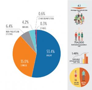 Beyond Iskandar: 5 Next Boom Towns in Johor Demographic-breakdown