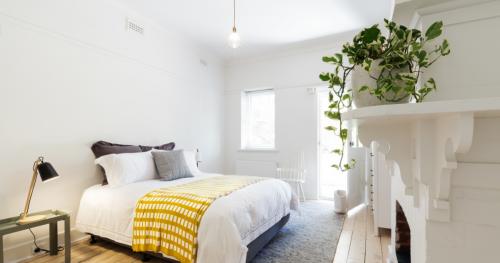 colourful-bedroom-indoor-plants