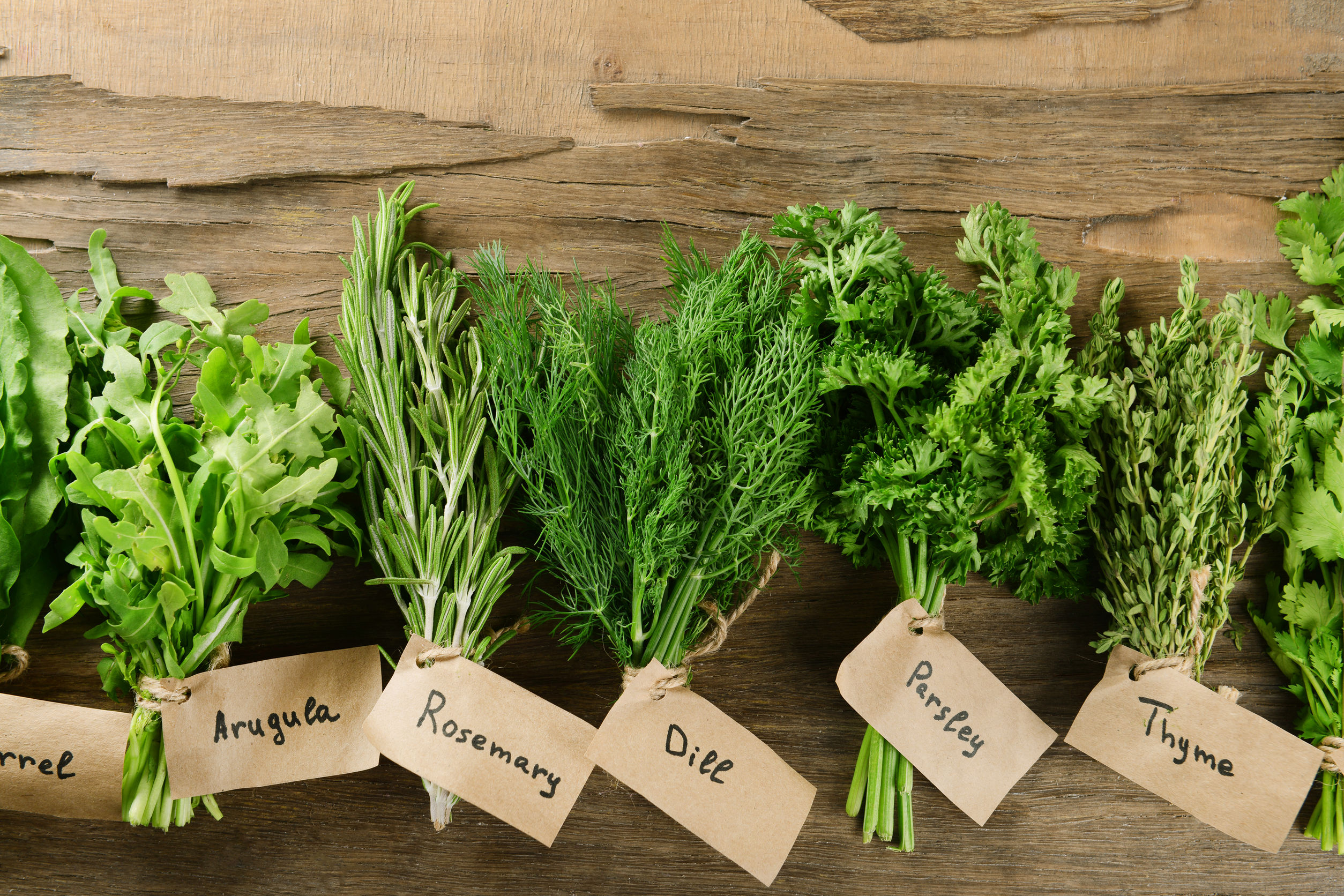 8 easiest herbs to grow in your kitchen garden - iproperty.com.my