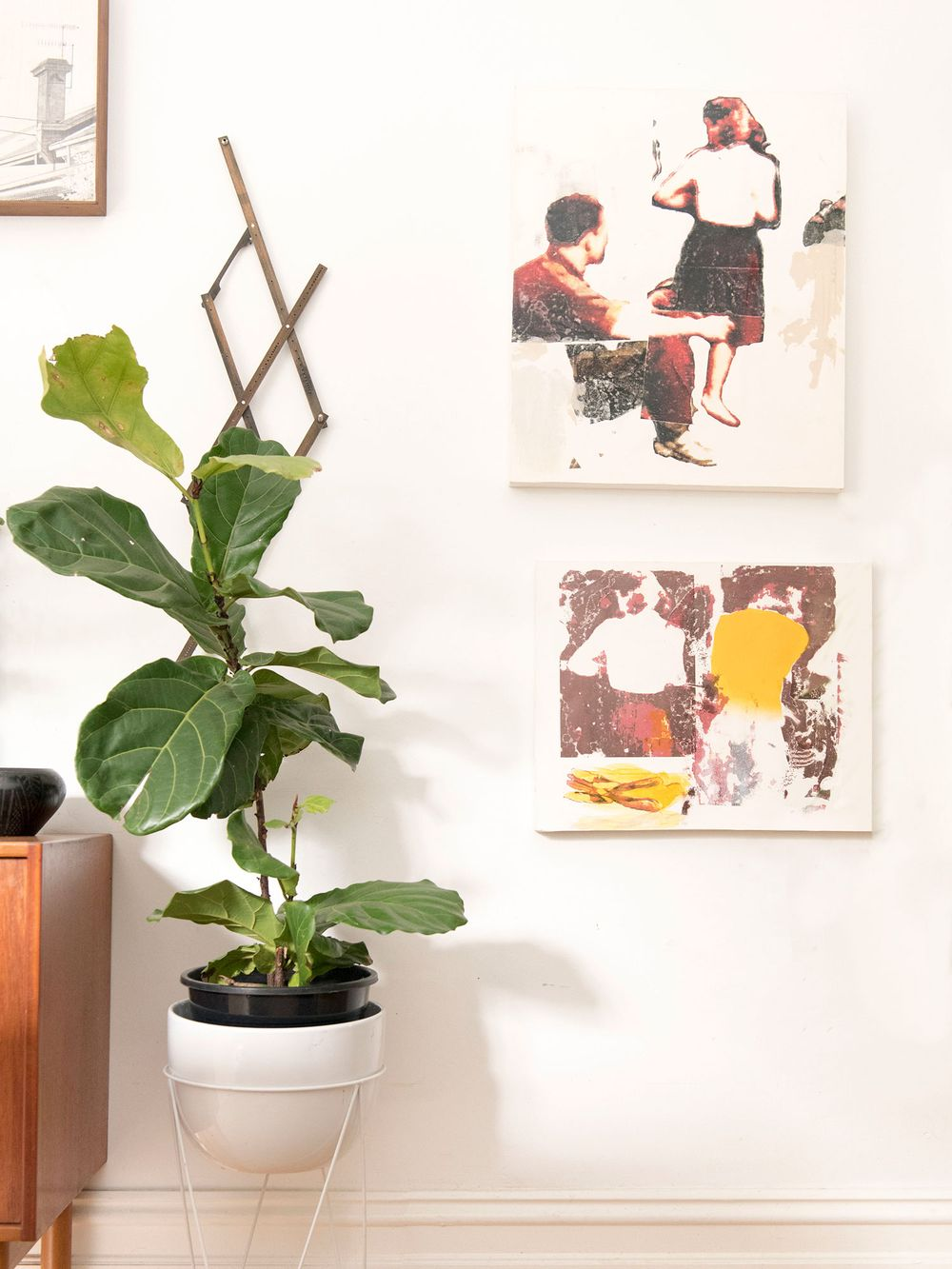 white-wall-with-indoor-plant-and-wall-art
