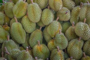 Group of durians, durians background.