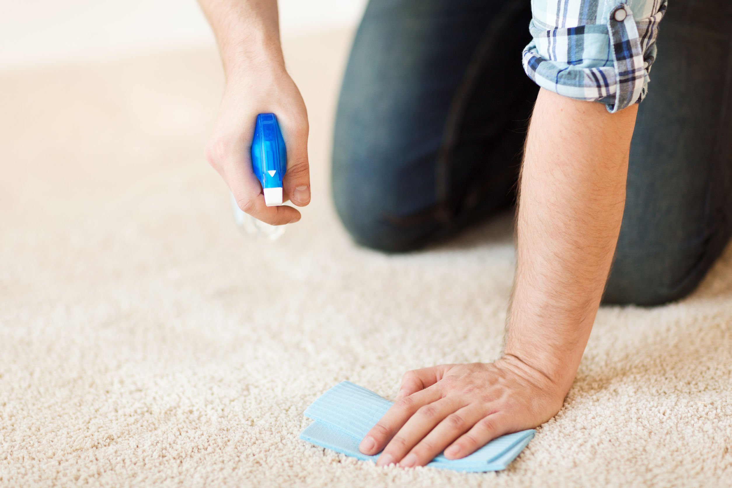 close up of male cleaning stain on carpet