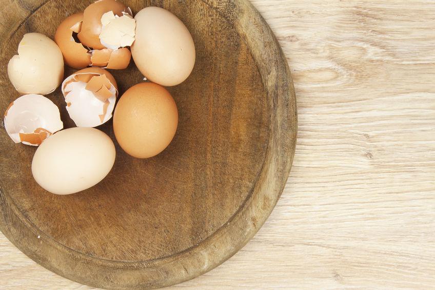 petua-halau-cicak-kulit-telur