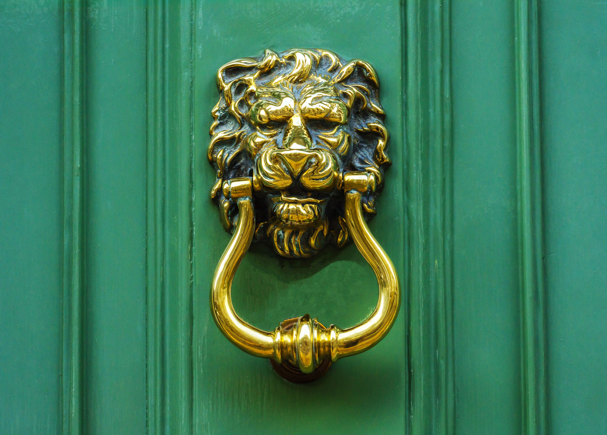 Door with brass knocker in the shape of a lion's head, beautiful