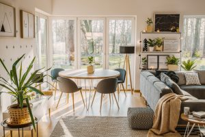 Plant in bright open space interior with chair at dining table near grey sofa and patterned pouf