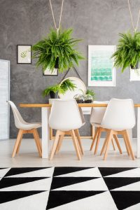 Cozy dining room interior with hanging plants