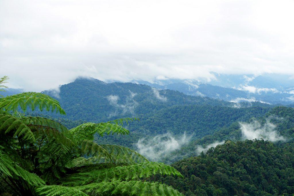 mountain-view-of-Banjaran-Titiwangsa-s