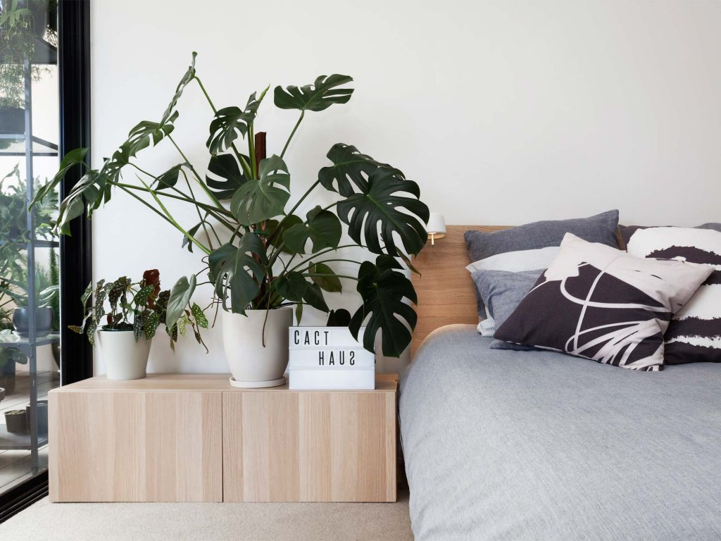 indoor-plants-bedroom-ideas