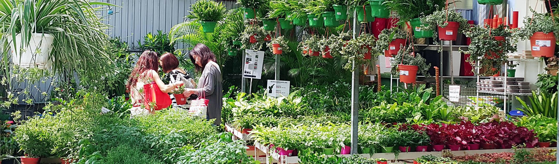 Floristika plant nursery