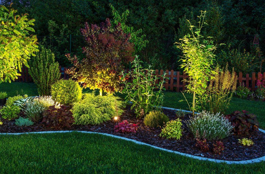 Illuminated Garden plant nurseries in kl