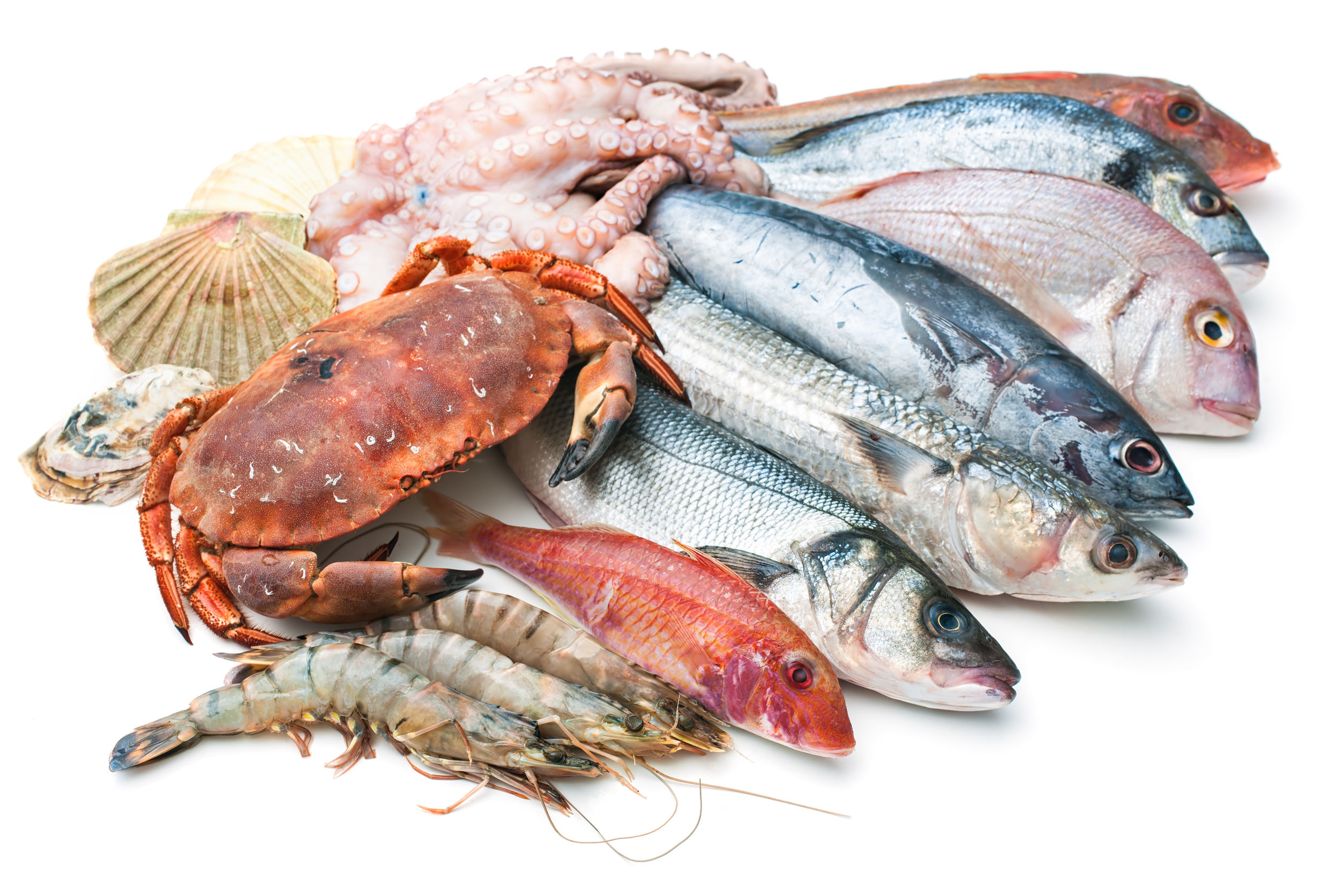 myseafood-mart-online-grocery-stores-malaysia