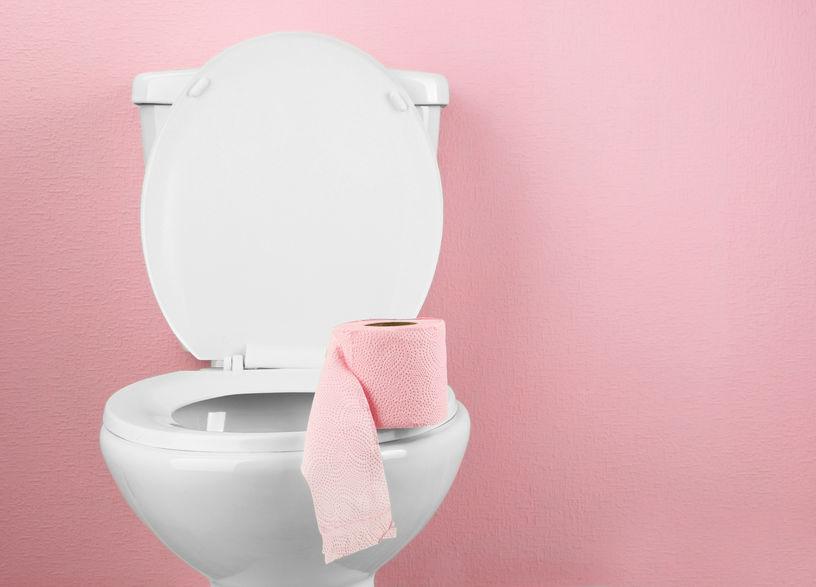 cara-hapuskan-jentik-jentik-tutup-tandas