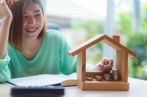 settle-housing-loan-or-invest